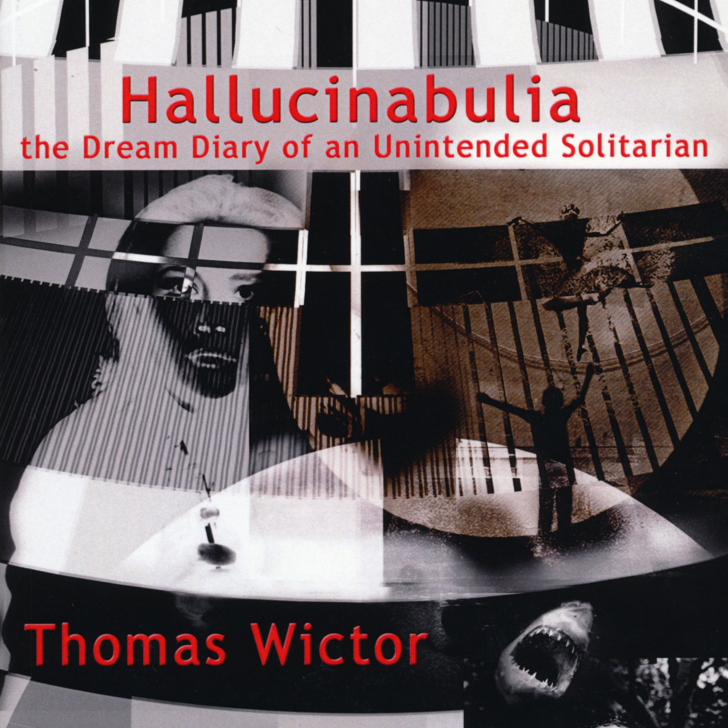 Hallucinabulia: The Dream Diary of an Unintended Solitarian