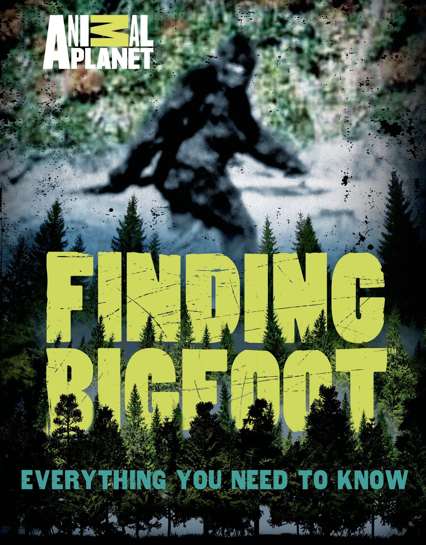 Download Finding Bigfoot: Everything You Need to Know (Animal Planet) pdf epub