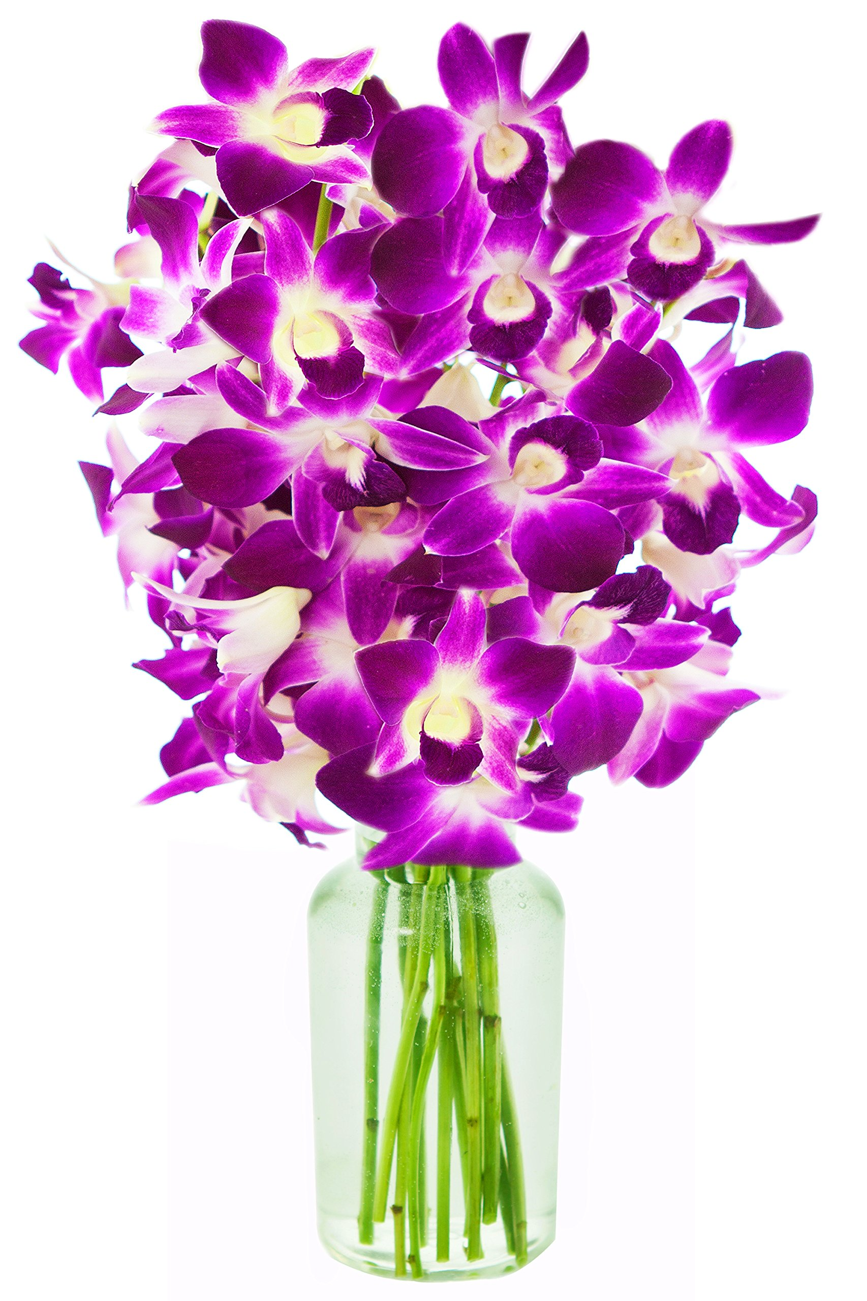 KaBloom Bouquet of Purple Orchids from Thailand with Vase