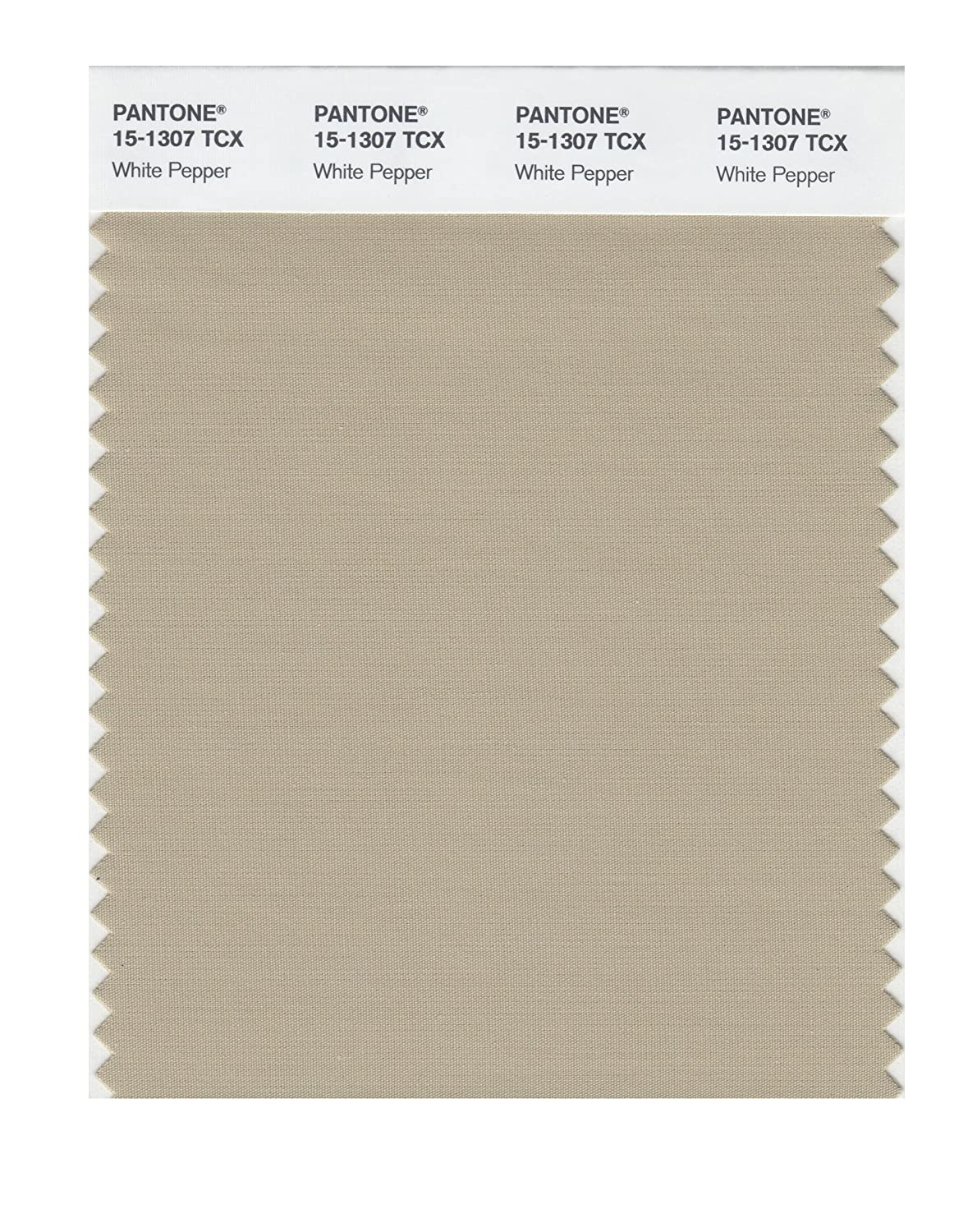 Pantone 15-1307 TCX Smart Color Swatch Card, White Pepper - House Paint -  Amazon.com