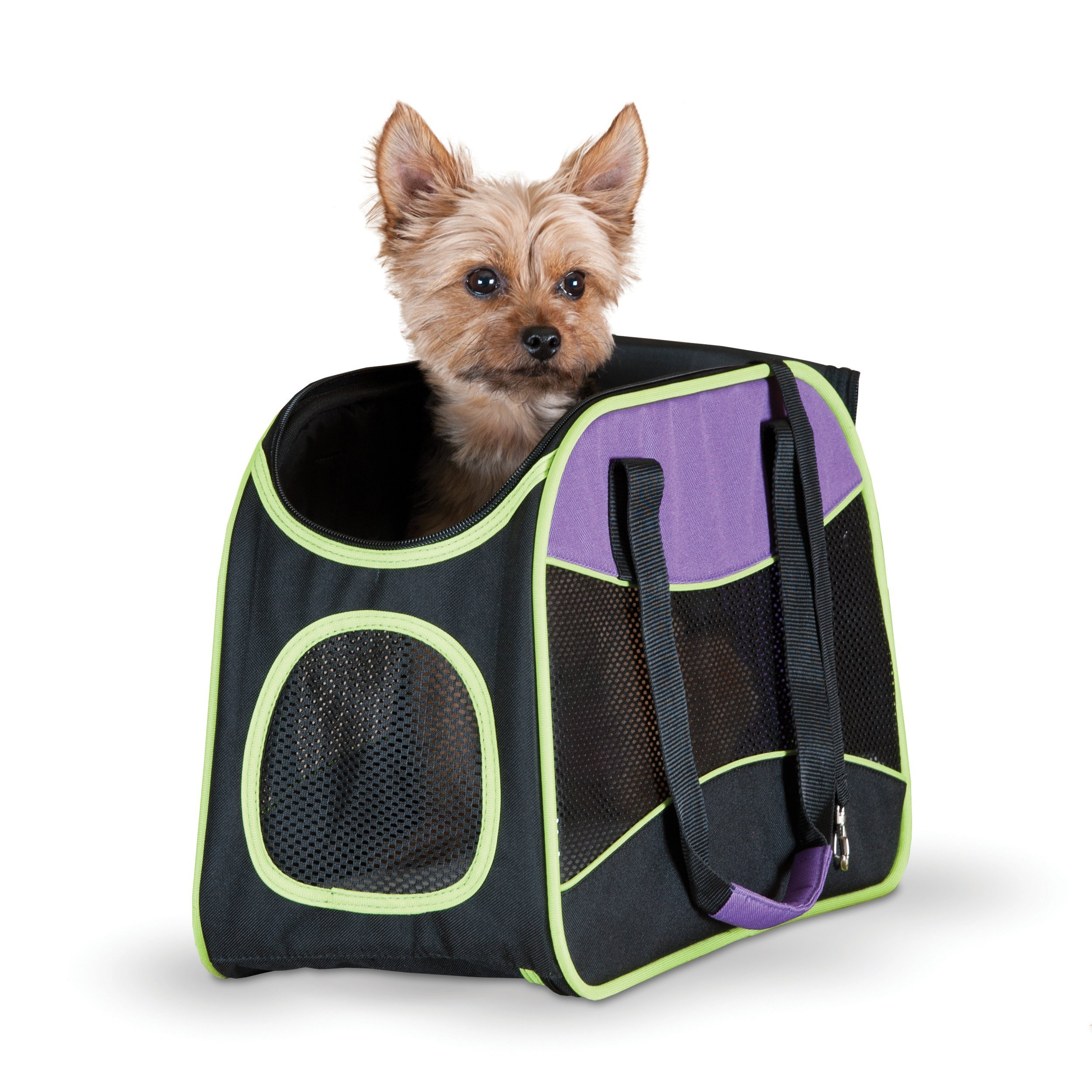 K&H Manufacturing Easy Go Carrier Purple/Black/Lime Green 8-Inch by 16.5-Inch