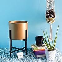 ecofynd Centuria Mid Century Plant Pot Set - Modern Round Planter with Metal Stand