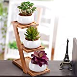 Set of 3 White Ceramic Round Succulent Planter Pot with 3-Tier Bamboo Display Rack Stand