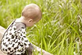 Kate Quinn Organics Unisex-Baby Henley