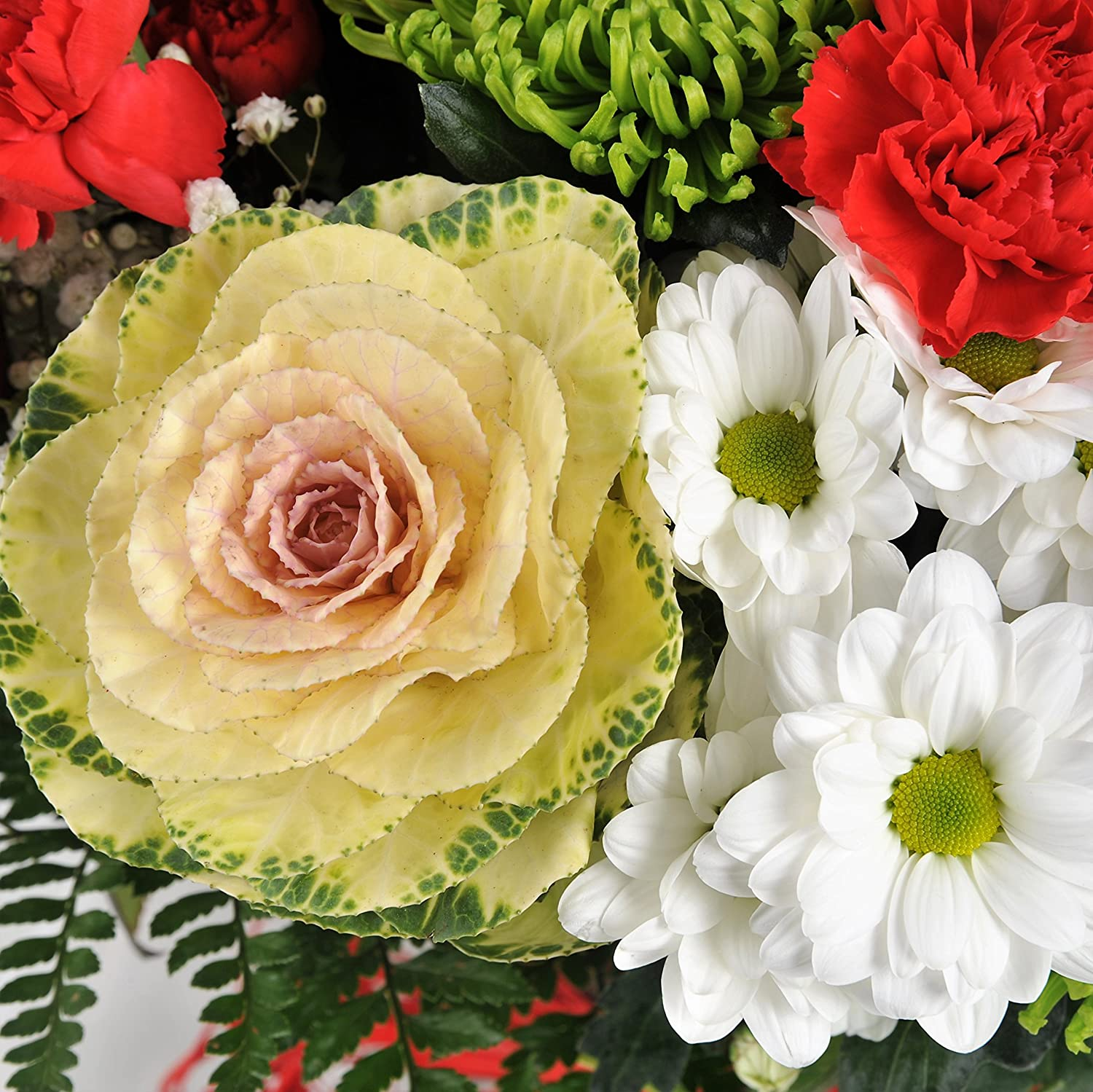 Red And Green Large Luxury Flowers Delivered Fresh Flowers With
