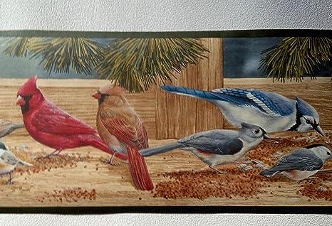 Winter Birds Wallpaper Border Cardinals Blue Jays Woodpeckers