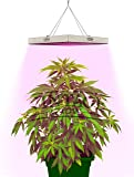 VINTAGE GROW | Best LED Grow Lights for Indoor