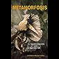 Metamorfosis existencial: Una Transformación de lo que eres a lo que quieres ser (Spanish Edition)