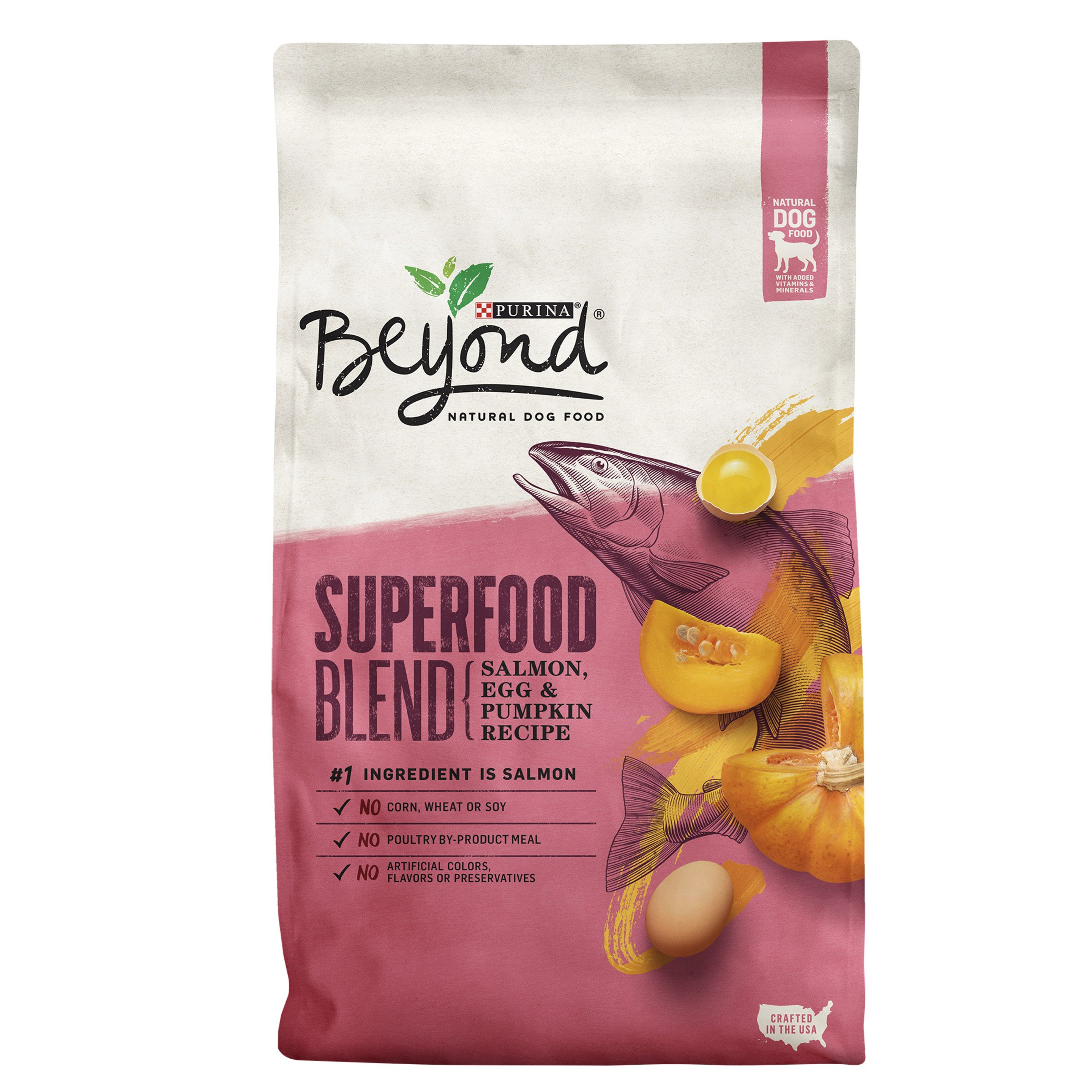 Purina Beyond Superfood Blend Salmon, Egg & Pumpkin Recipe Adult Dry Dog Food - 14.5 lb. Bag