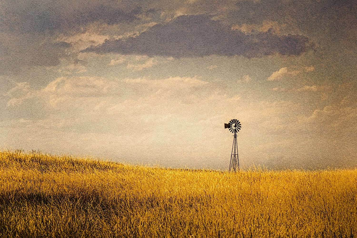 Amazon.com: Windmill Wall Decor Canvas Farmhouse Wall Art Rustic ...