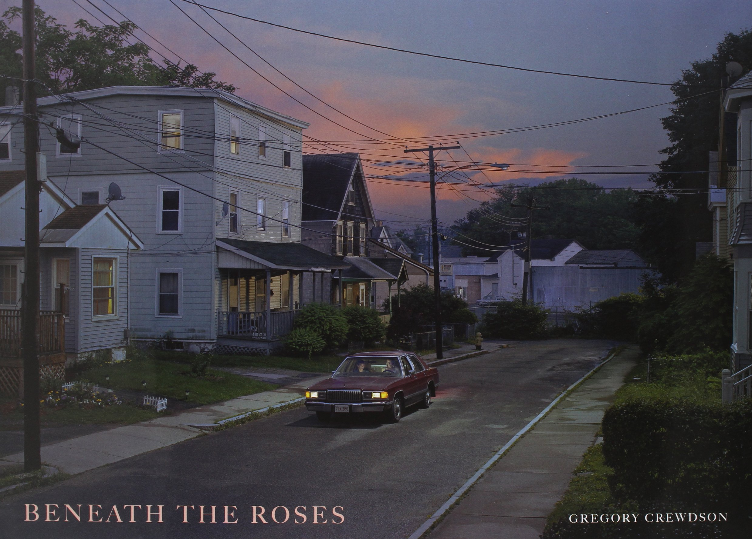 Image result for beneath the roses
