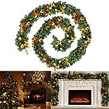 idena iii 60196 weihnachtskranz mit 10 warm wei en led batteriebetrieben mit timer. Black Bedroom Furniture Sets. Home Design Ideas