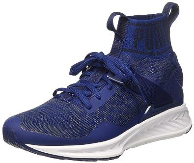 buy popular e16b5 2cfac Puma Unisex's Ignite Evoknit Blue Running Shoes-10 UK/India ...