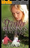 Love Begins: A Contemporary Christian Romance Novel (Tender Blessings Book 1)