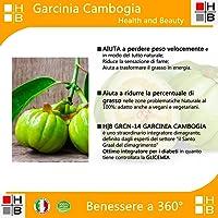 H|B GRCN-14 GARCINIA CAMBOGIA ULTRAFORTE 1400mg per compressa 100% PURE con 720mg HCA per cpr - 100% NATURALE (90 CPR) Bruciagrassi/Fame Nervosa/Ottimo alleato delle Diete! Prodotto ITALIANO
