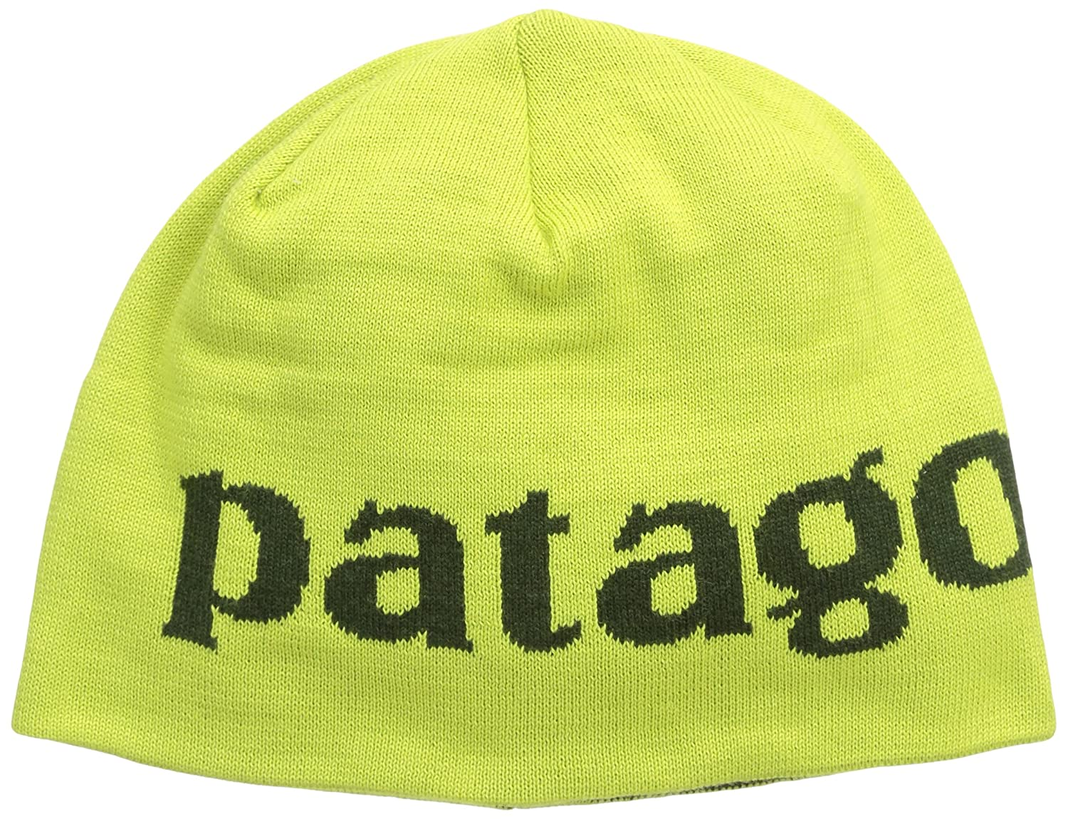 504fc3b70d8 Amazon.com  Patagonia Men s Beanie Hat Logo Belwe Folios Green One Size   Clothing