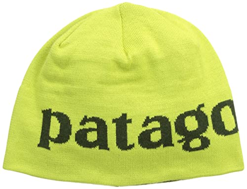 Amazon.com  Patagonia Men s Beanie Hat Logo Belwe Folios Green One Size   Sports   Outdoors 1f800c32231