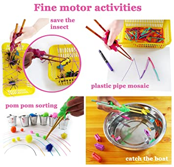 Formación/Ayudante palillos para los niños y adultos - Desarrolla las habilidades motoras: Amazon.es: Hogar