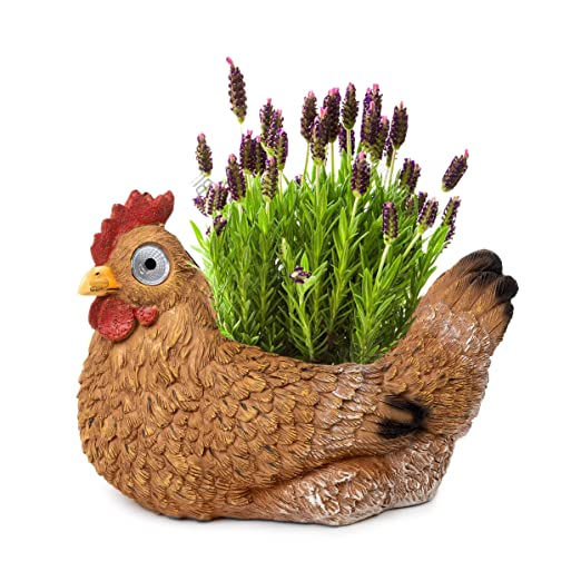225 & Blazin\u0027 Bison Succulent Chicken Flower Pot | Animal Flower Pot Solar LED | Outdoor Indoor Decor for Yard Patio Pool or Deck | Garden Figurine Gift | ...