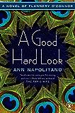 A Good Hard Look: A Novel of Flannery O'Connor