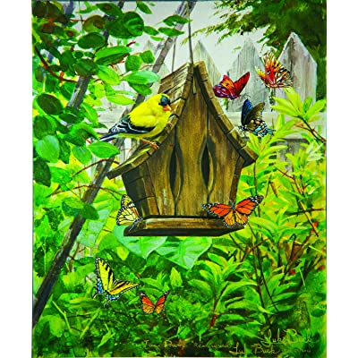 Butterfly B & B 300 Pc Jigsaw Puzzle by SunsOut: Toys & Games