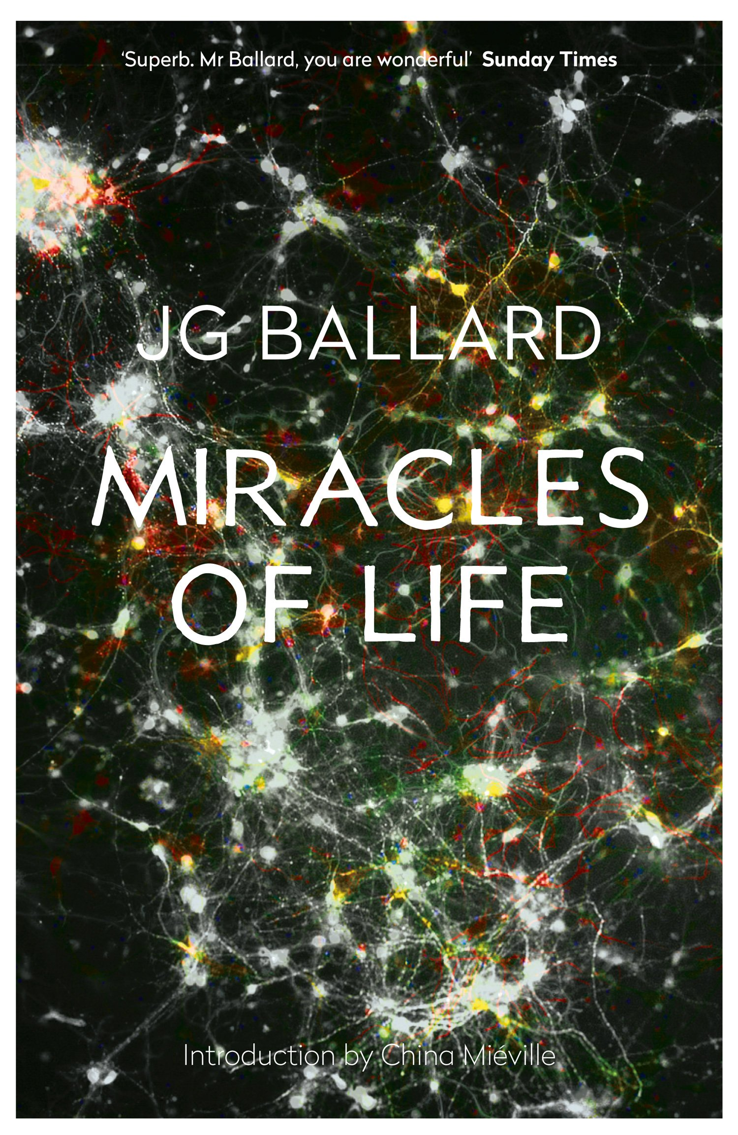 miracles of life essay Free essay: the miracle of life the miracle of life is something most of us will  experience in our lifetime the process before actually giving birth, i.