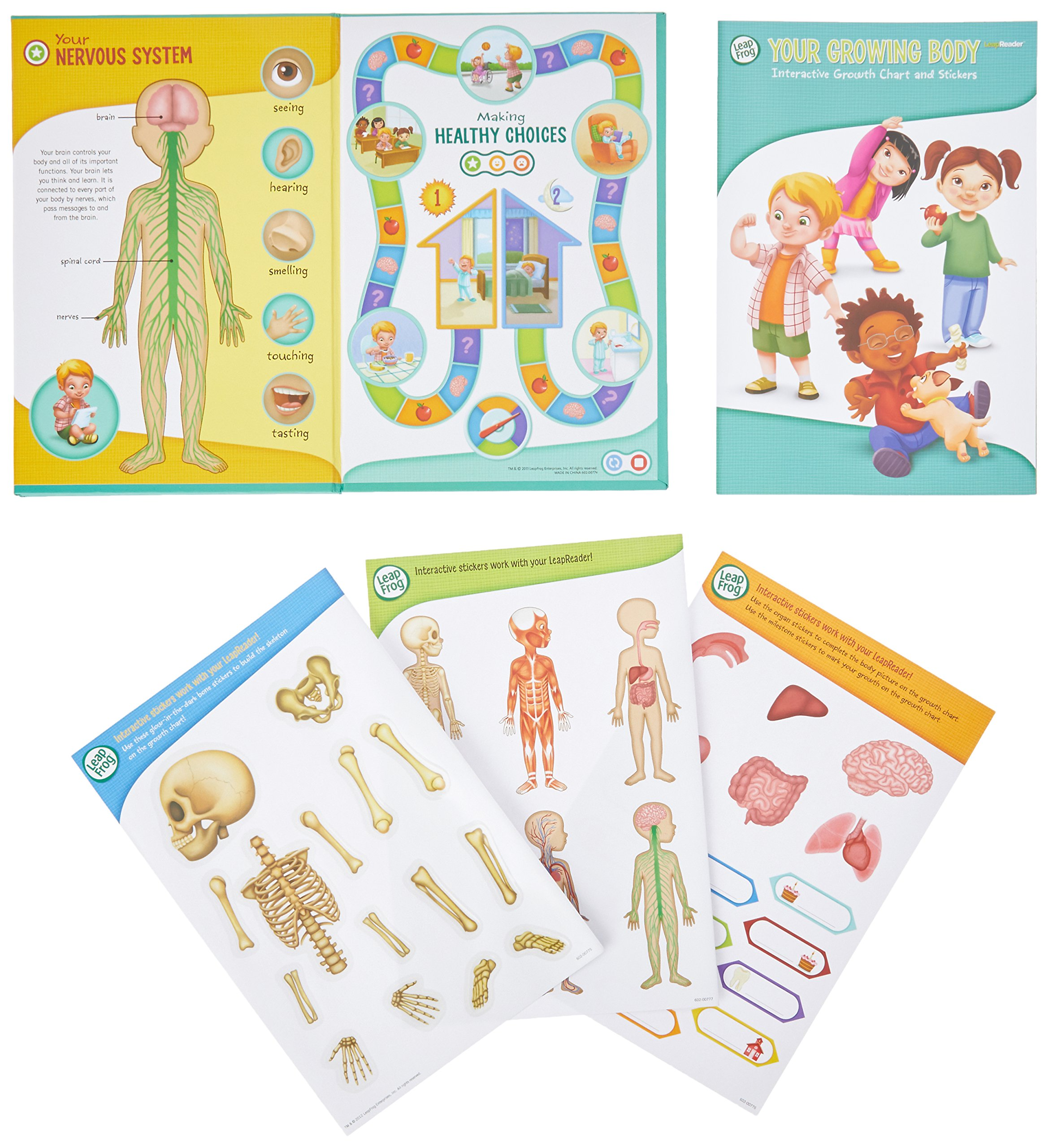 LeapFrog LeapReader Interactive Human Body Discovery Set (works with Tag) by LeapFrog (Image #3)