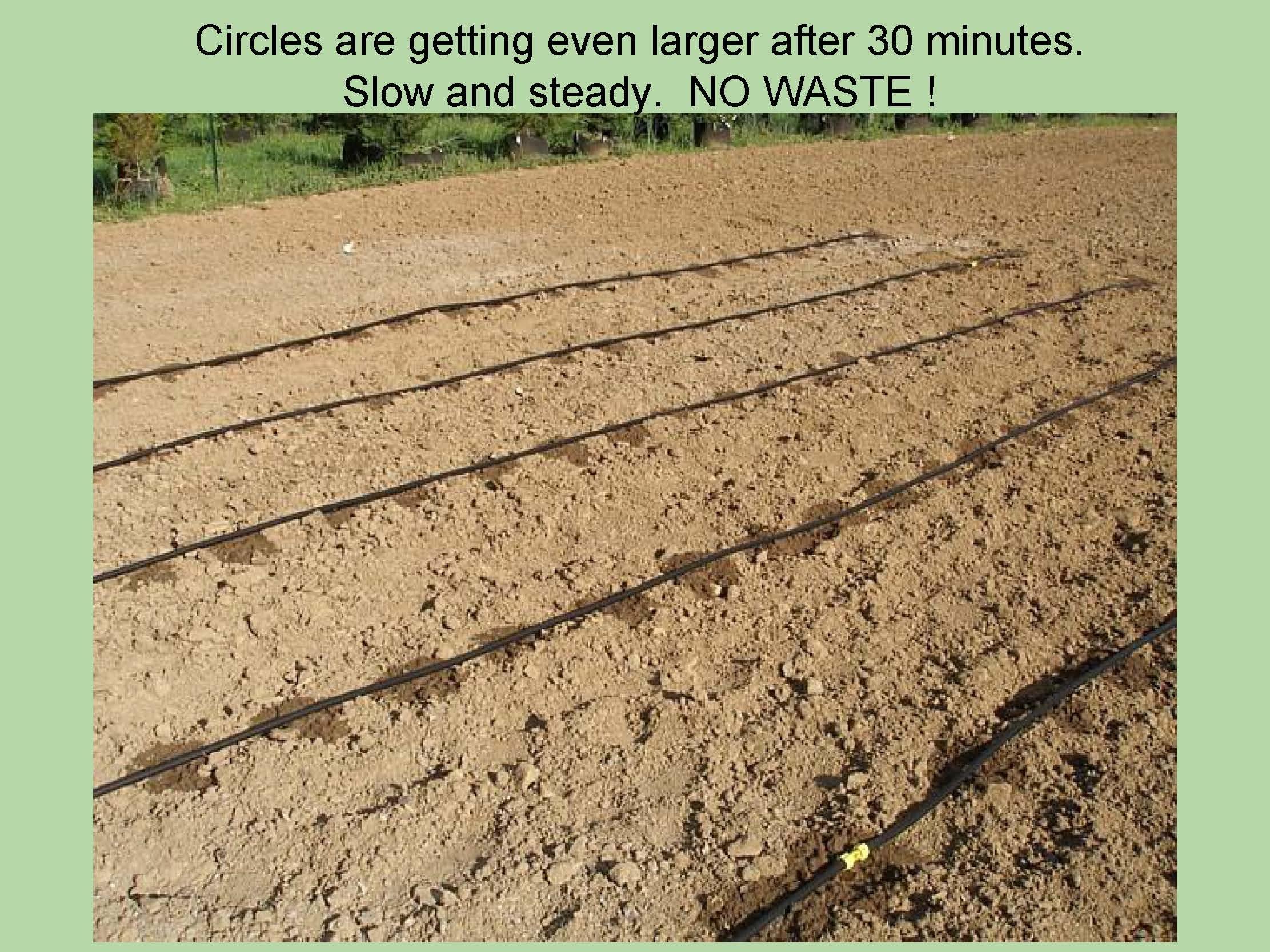 Truck Farmers Garden Kit – 40 Rows X 50 Ft– Watering Garden Drip Irrigation