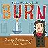 Burn: Michael Faraday's Candle