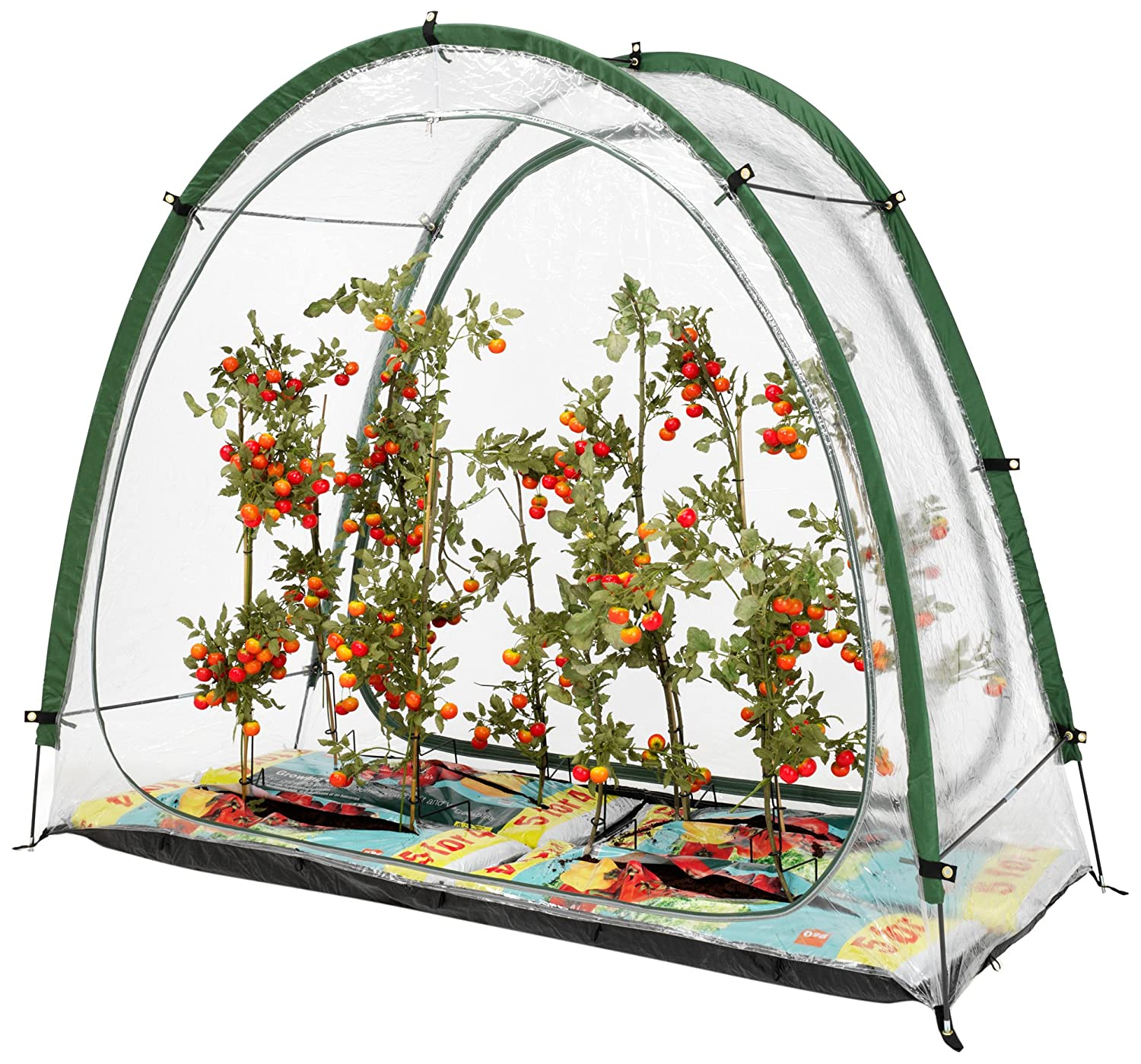 CultiCave Modular Greenhouse System Rob McAlister Ltd