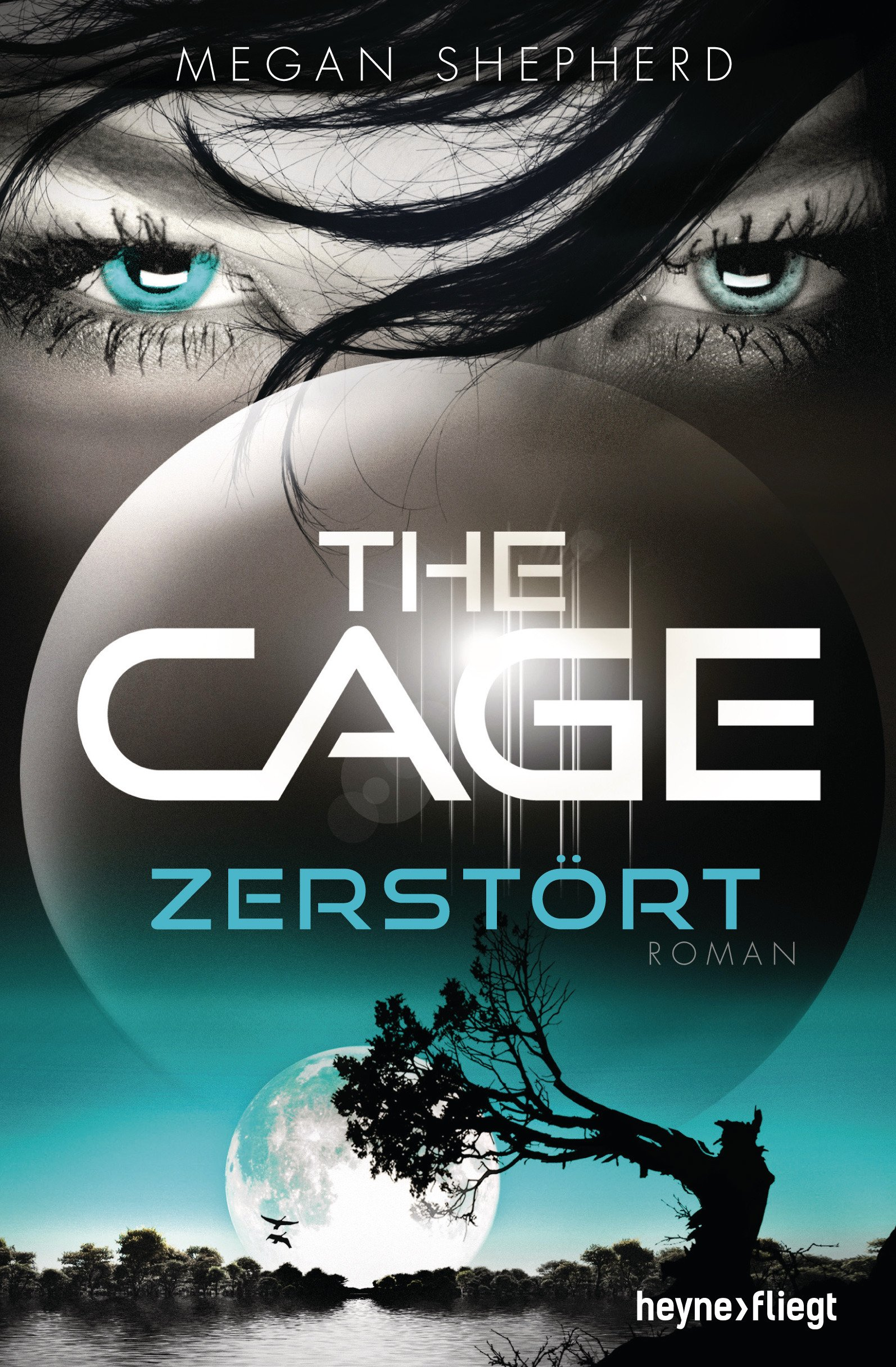 TheCage3