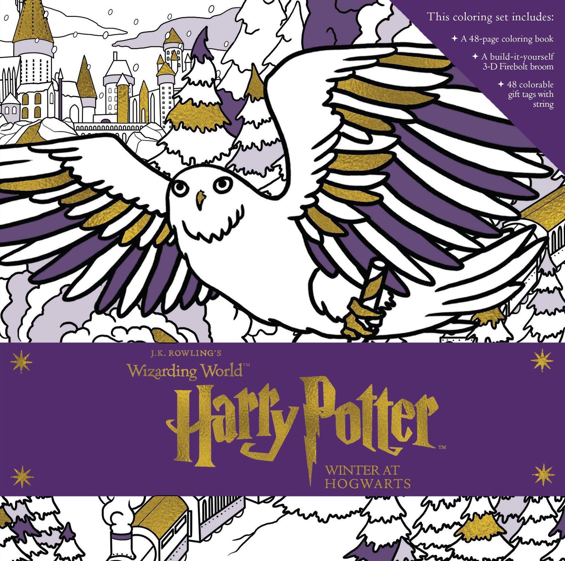 Harry Potter: Winter at Hogwarts: A Magical Coloring Set ...