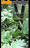 微熱ガーデン