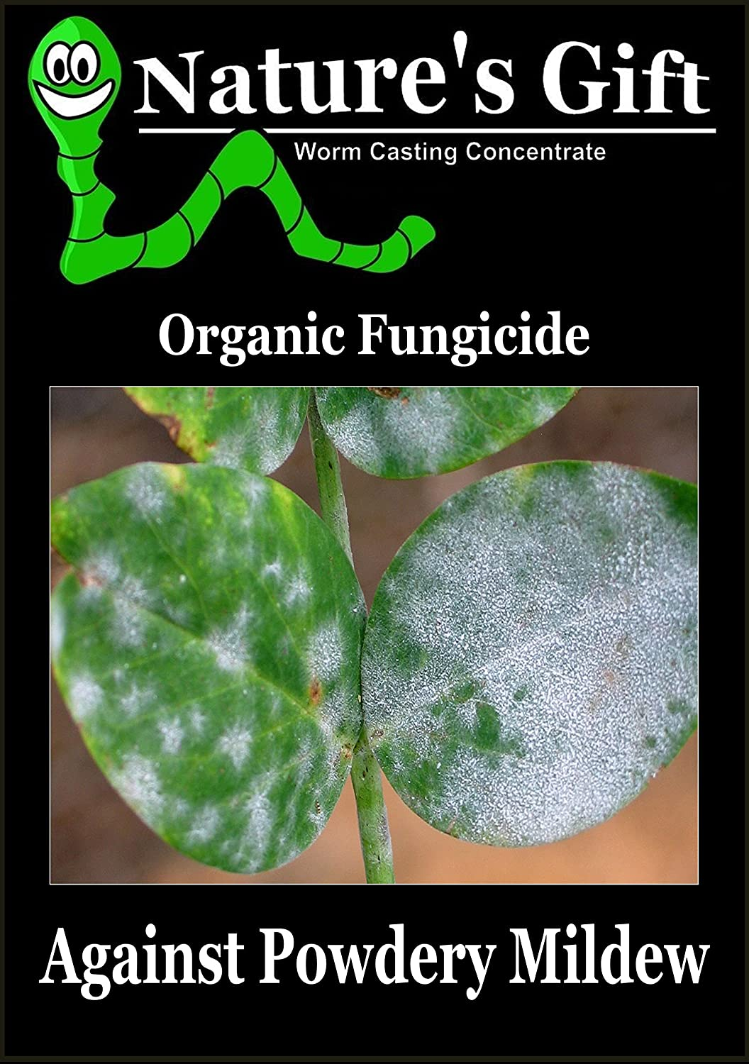 NATURE'S GIFT for POWDERY MILDEW - VERMICOMPOST LIQUID FUNGICIDE CONCENTRATE - MADE FROM VERMICAST, WORM CASTINGS,WORM CASTS,WORM HUMUS,WORM MANURE,WORM POO,WORM POOH,WORM POOP,WORM TEA - 100% ORGANIC (1 LITRE) E-COCO PRODUCTS UK