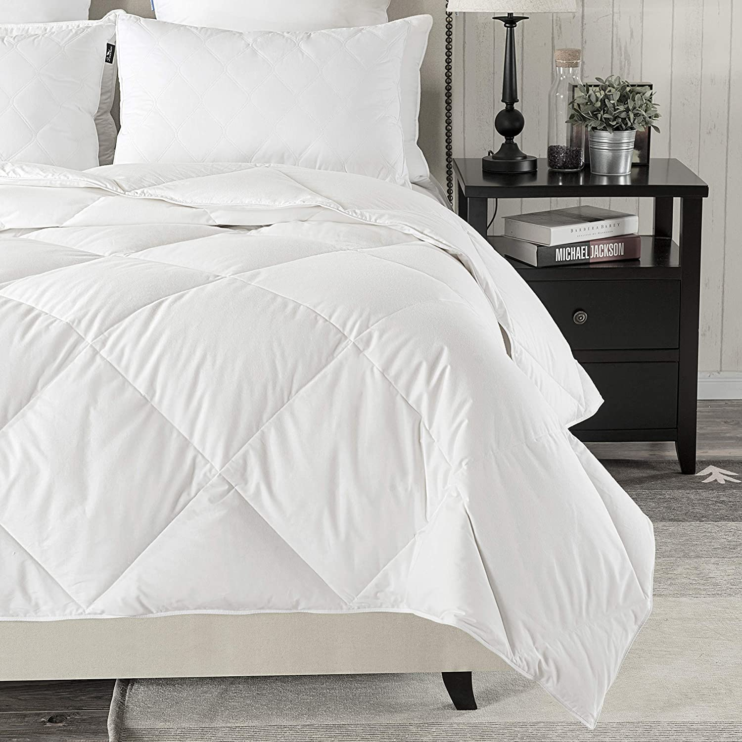 Queen,White -Summer Weight Down Duvet Inserts,230 Thread Count 550 downluxe Lightweight Down Comforter Fill Power,100/% Cotton Shell Down Proof with Tabs