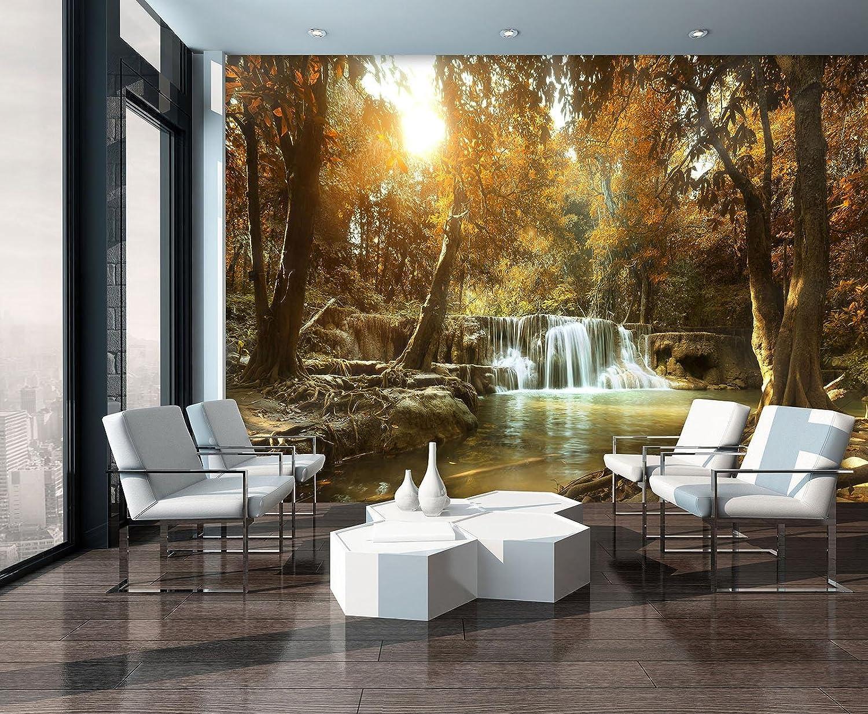Nature Paysage Waterfall River Forest Woods | Photo Papier peint 10470//_ P-ms Photo Papier peint Welt-der-tr/äume Cascade dans la for/êt en automne 254cm. x 184cm. P4