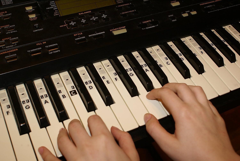 Piano teclado música Nota pegatinas etiquetas transparent