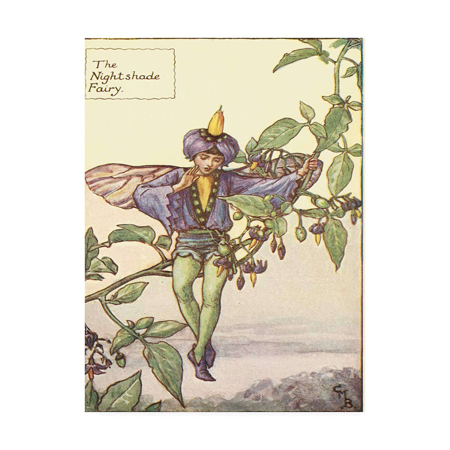 Trademark Fine Art WAG16402-C1824GG The Nightshade Fairy by Vision Studio, 18x24