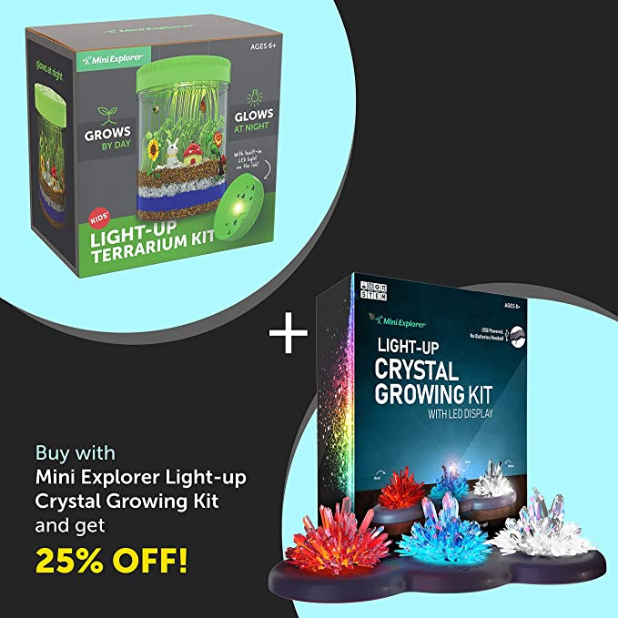 Amazon Com Light Up Terrarium Kit For Kids With Led Light On Lid