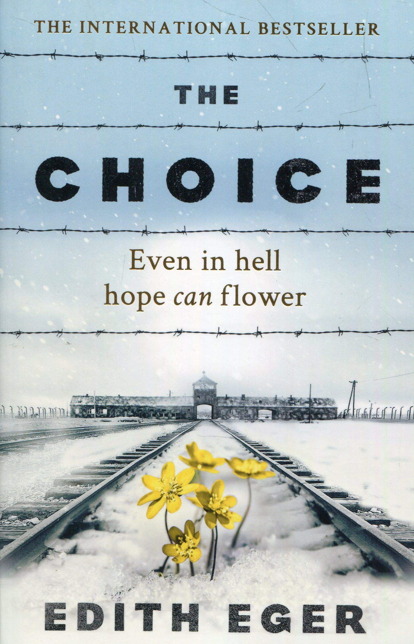 The Choice  A True Story Of Hope