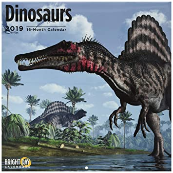 Uc Calendar 2019-16 Dinosaurs 2019 16 Month Wall Calendar 12 x 12 Inches: Amazon.ca