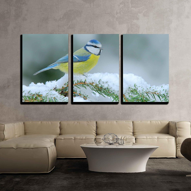 Blue Tit Bird Box Sunset CANVAS WALL ART DECO LARGE READY TO HANG NIGHT all siz