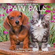 Mead 2020 PAW Pals Wall Calendar, 16-Month, 12 X 12 Inches, Bilingual (LMF226-1020)