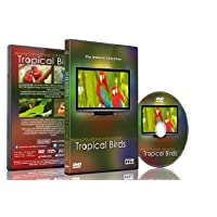 Relaxation DVD - Tropical Birds with Music or Nature Sound Calming Scenes of Pure...