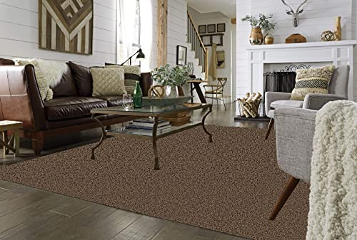 Koeckritz 9 x12 Brownie Area Rug Carpet.