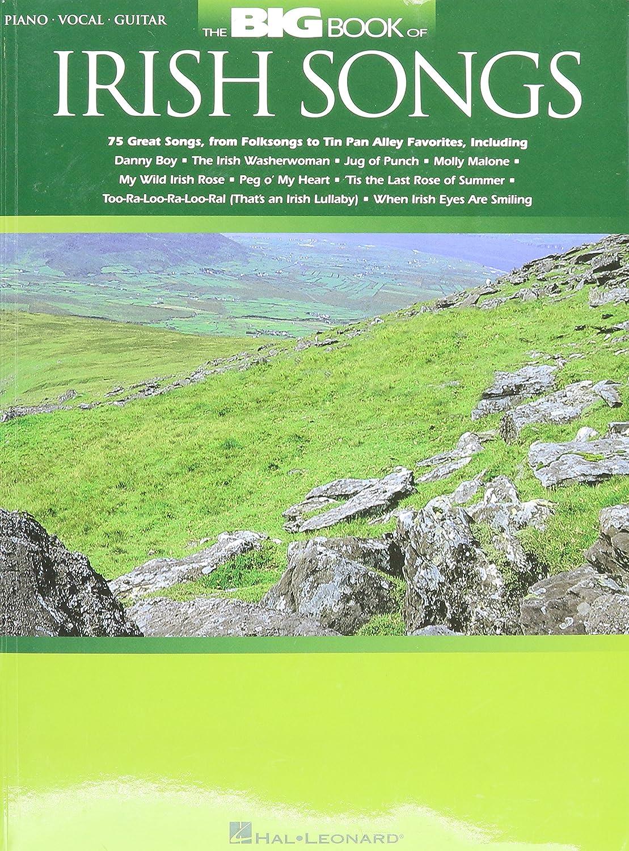 Amazon Hal Leonard The Big Book Of Irish Songs Musical Instruments