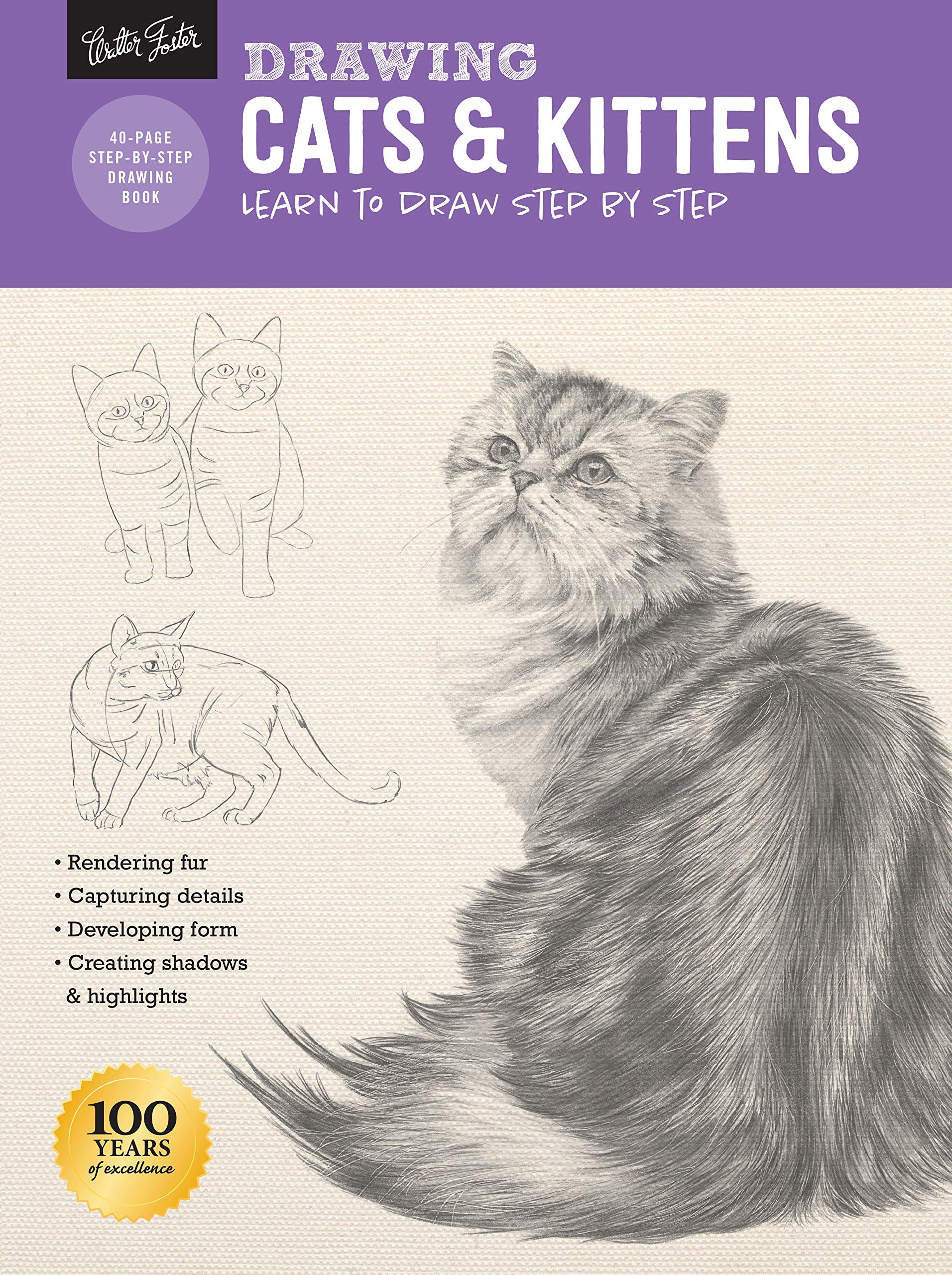 Drawing Cats Kittens Learn To Draw Step By Step How To Draw Paint Smith Cindy Stacey Nolon Tavonatti Mia 9781633225787 Books