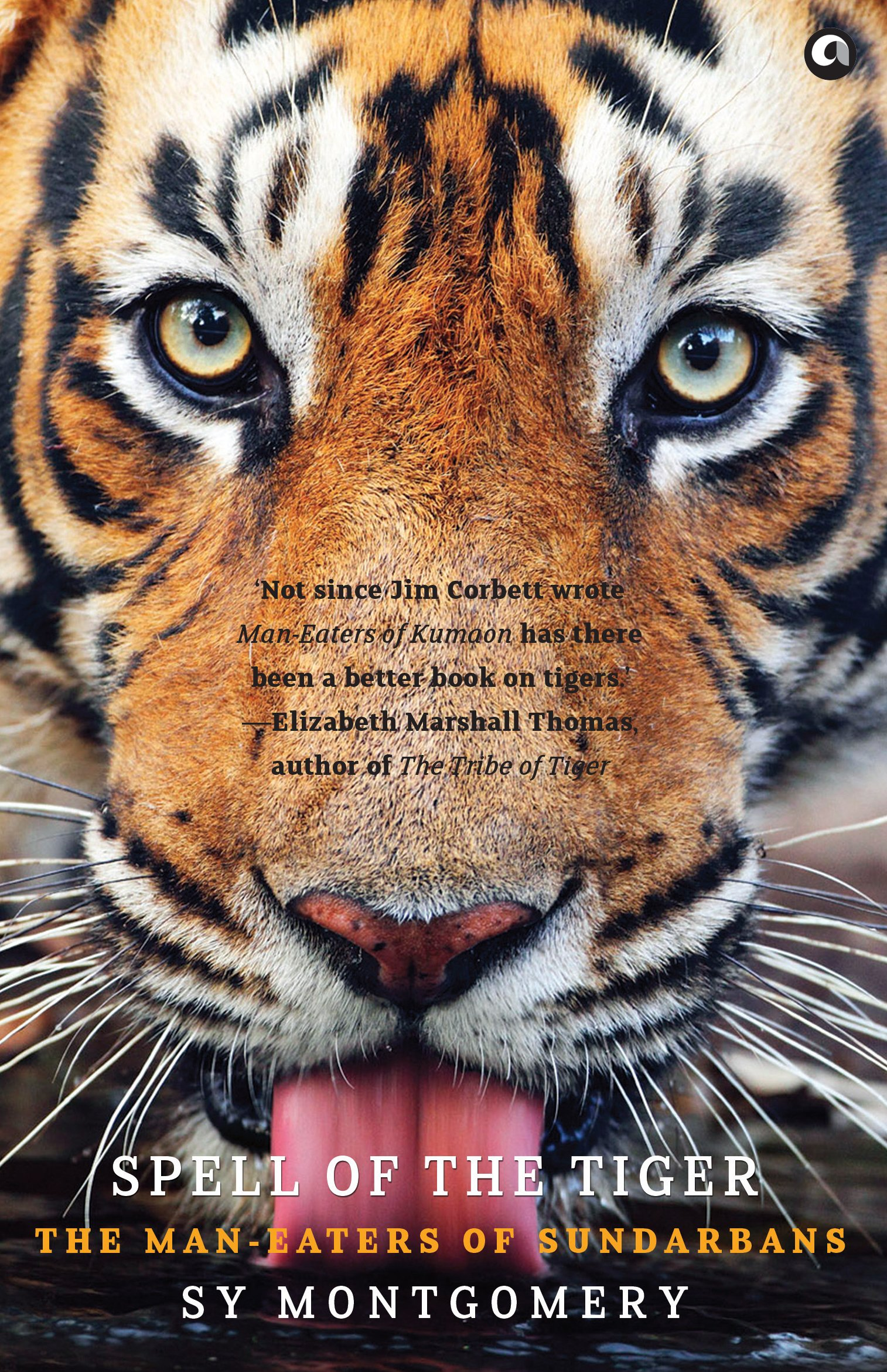 who wrote the tiger