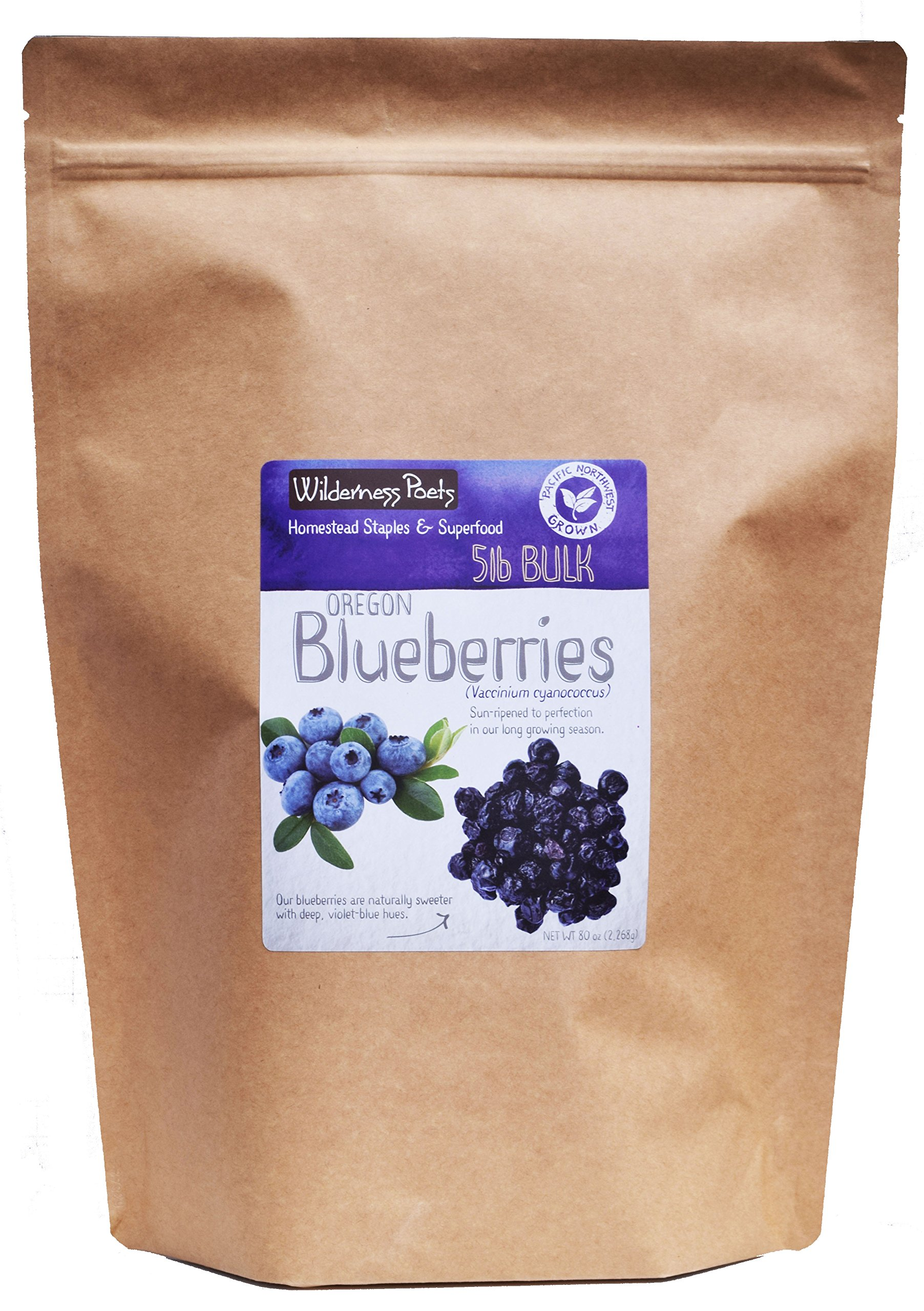 Wilderness Poets Oregon Blueberries (Sweetened with Apples) - Whole, Dried, Fruit - 5 Pound (80 Ounce)