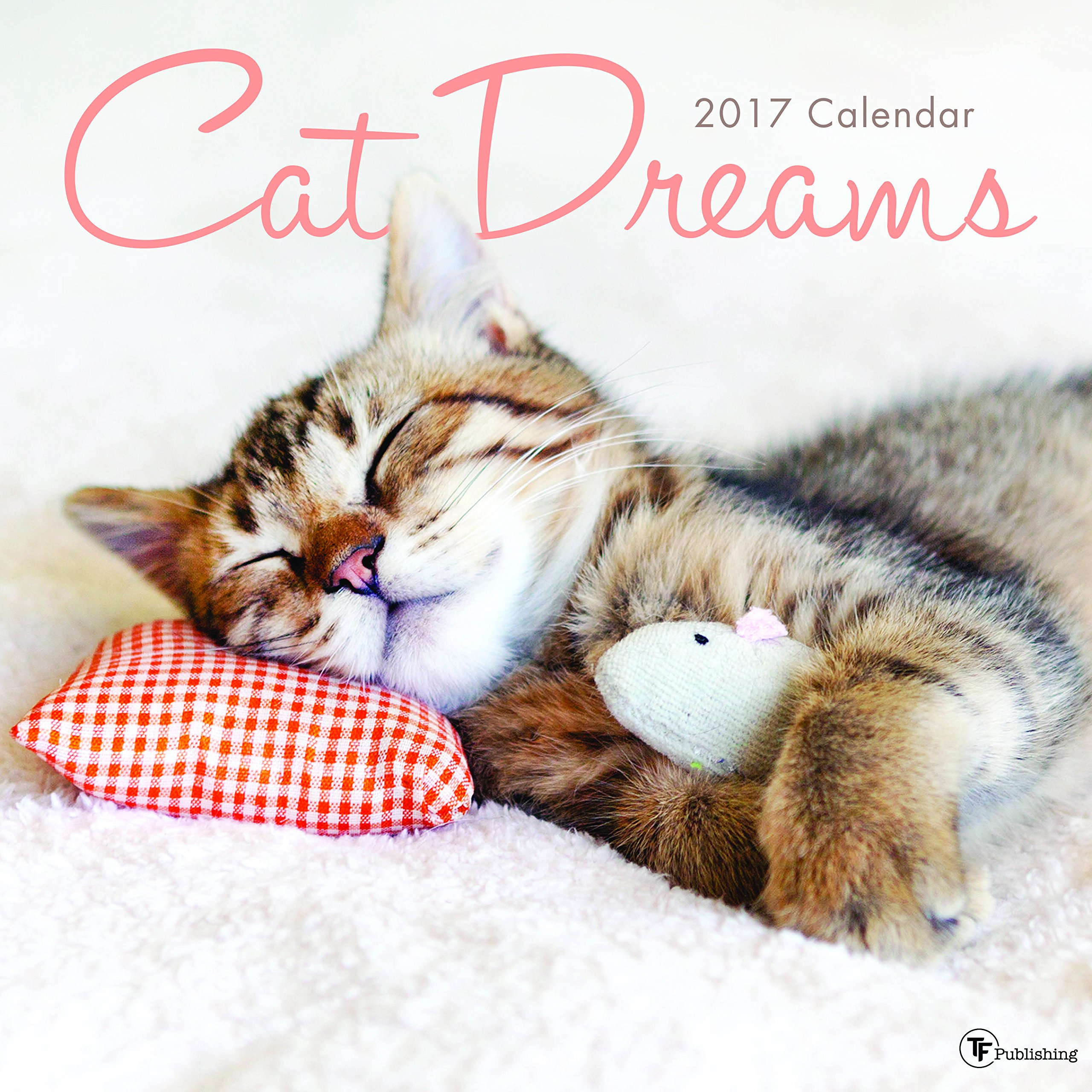 Download 2017 Cat Dreams Wall Calendar pdf epub